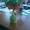 Декоративное дерево в детскую #1102813
