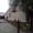 Продажа дом в Кобрине #1127218