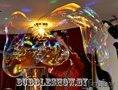 Шоу мыльных пузырей- Кобрин Брест Дрогичин